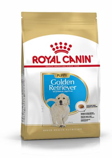 Nourriture Golden Retriever Junior
