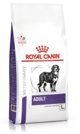 Veterinary Care Adult Large dog