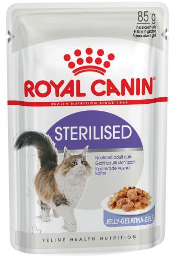 Sterilised Jelly Feline